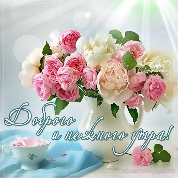 Доброе утро картинки красивые с цветами