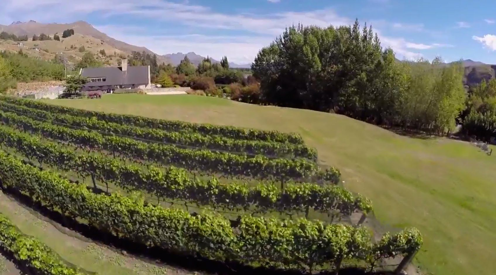 Wine Tasting in Queenstown, Central Otago. From the regions famous Pinot Noir to the delicate Rose and Pinot Gris, Queenstown has a wide range of world class wines to suit any palate. #ultimatequeenstown