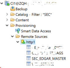 Provisioning data from web services with custom adapter
