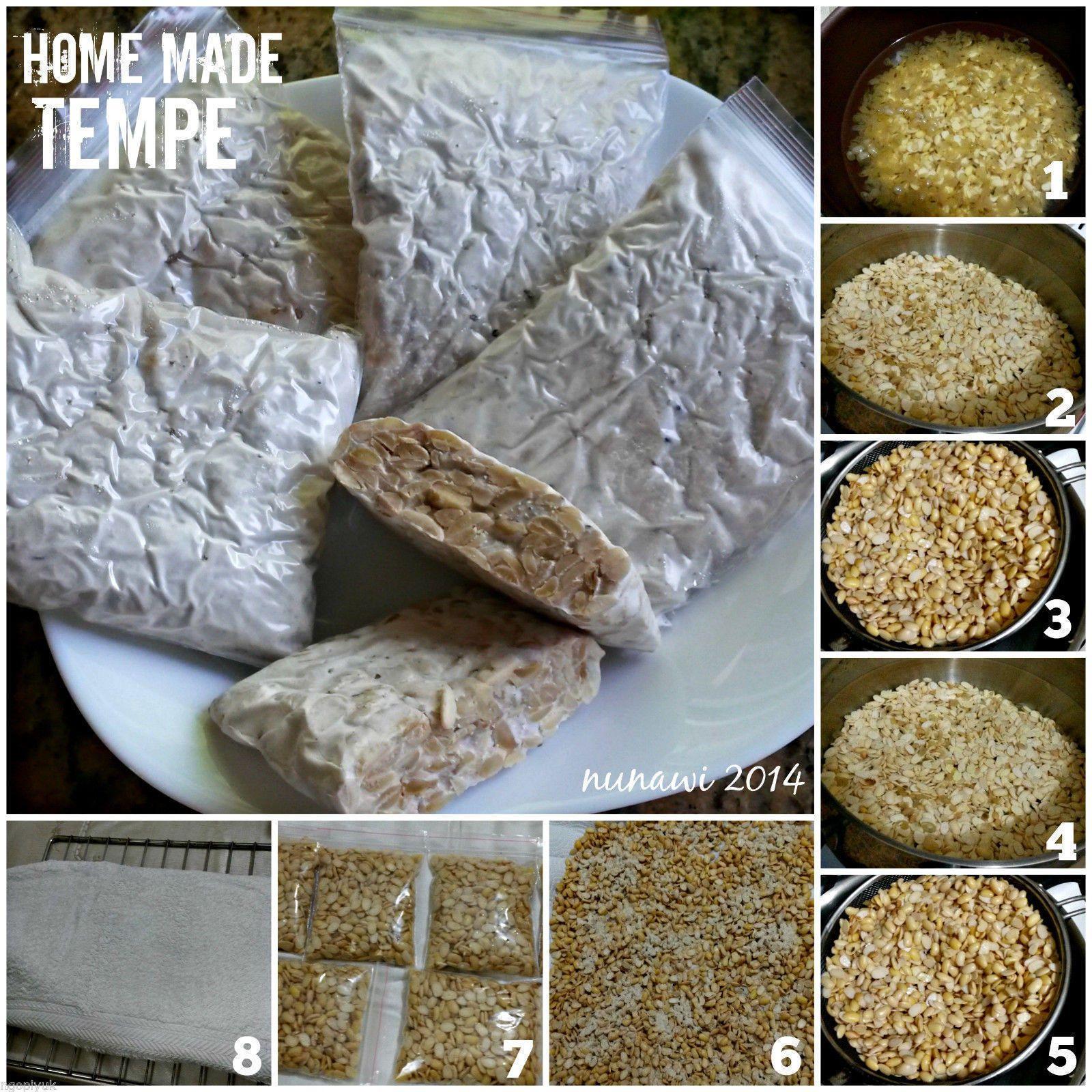 Tempeh Starter Culture Yeast Ragi Inokulum Homemade Best Protein Vegan Tempe Ebay Best Protein Homemade Yeast