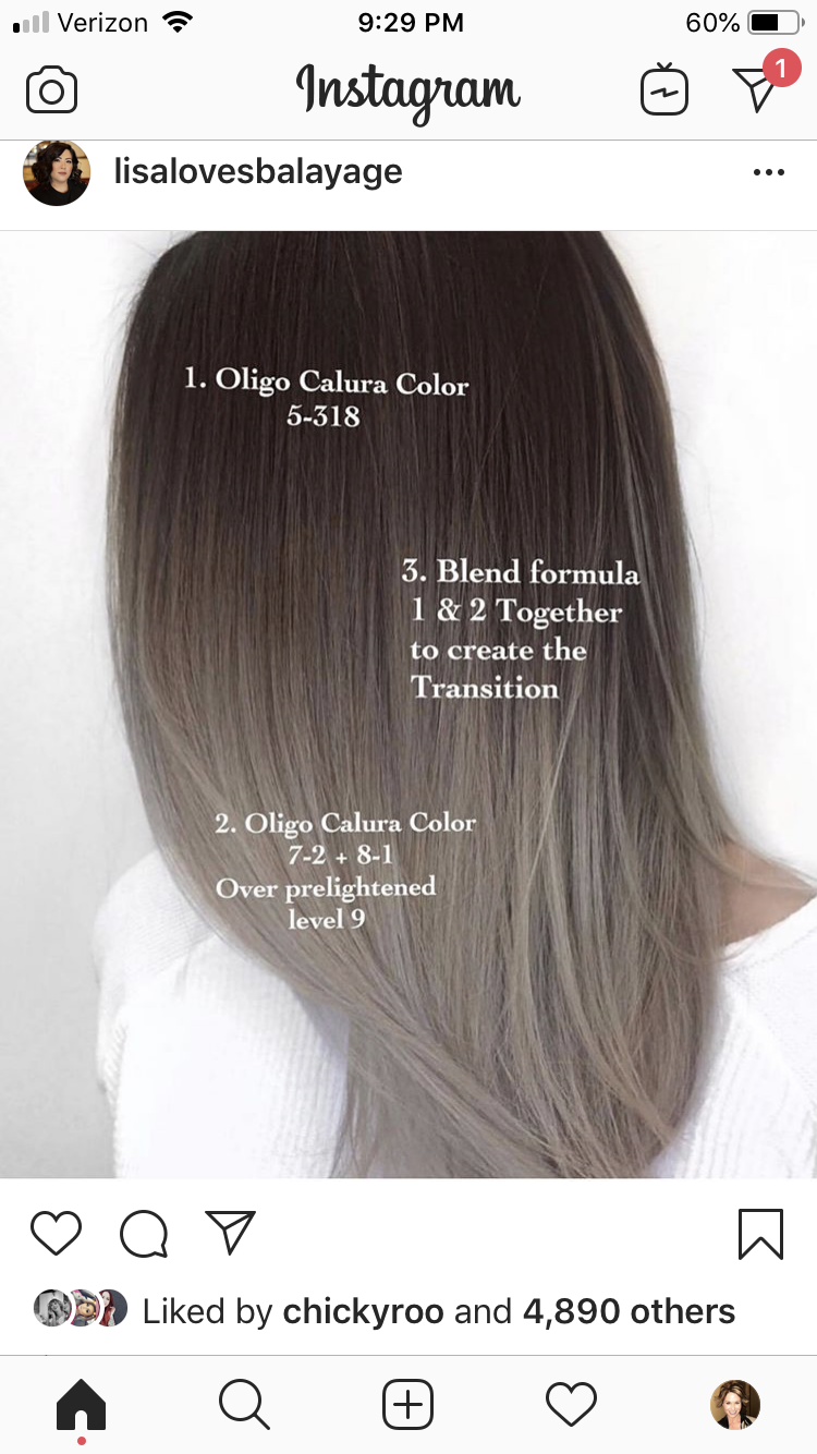 Pin By Melissa Scoran On Ombre Sombre Bayalage Root Shadow Ideas Ash Hair Color Hair Color Formulas Mushroom Hair