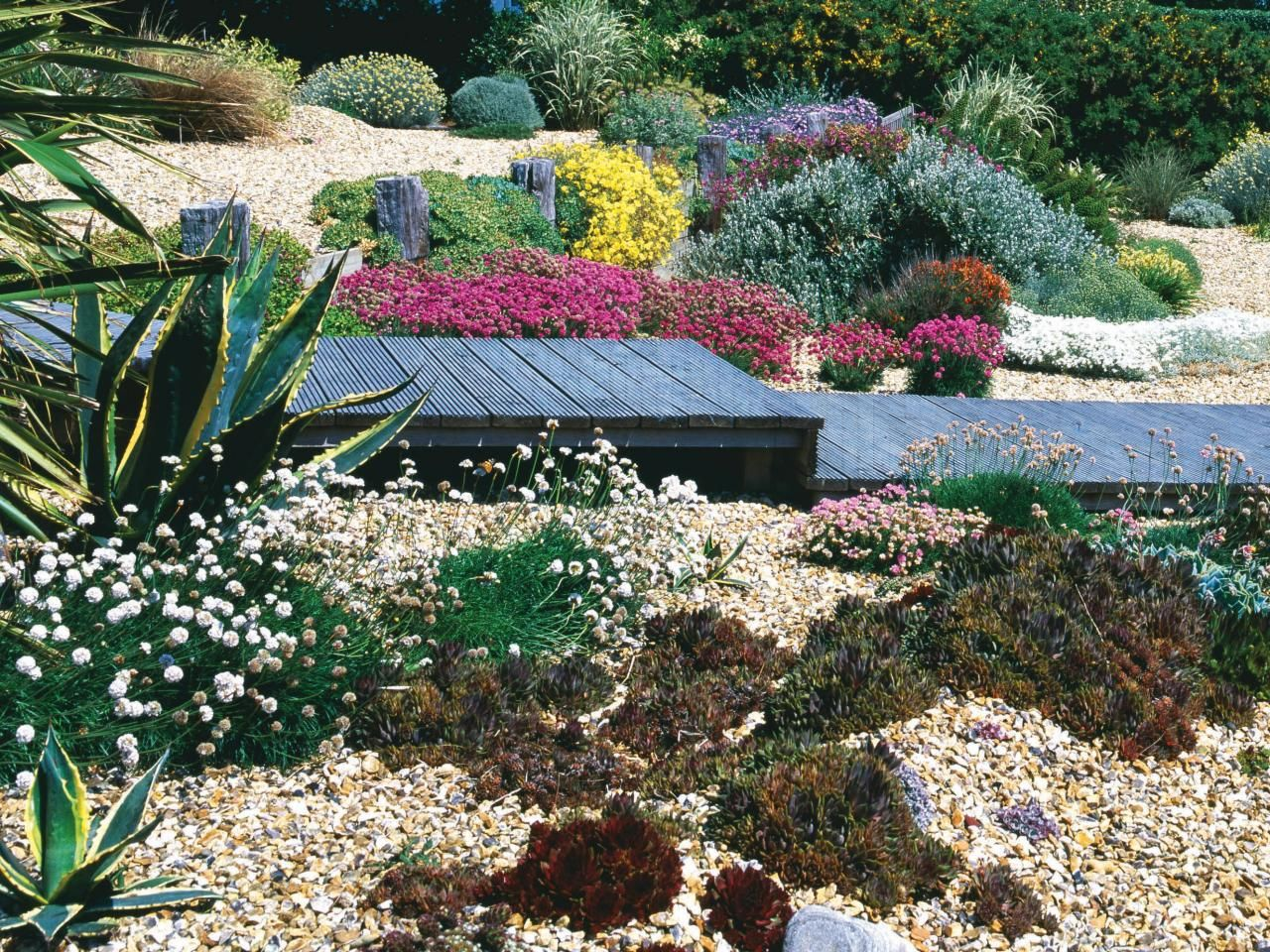 coastal-style gardens and landscapes