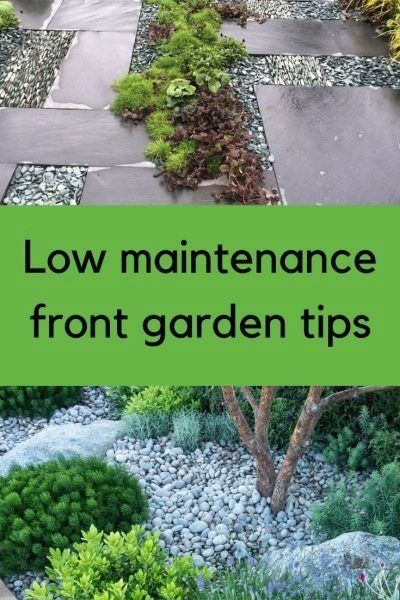 Low maintenance front garden ideas - the myths and the ...