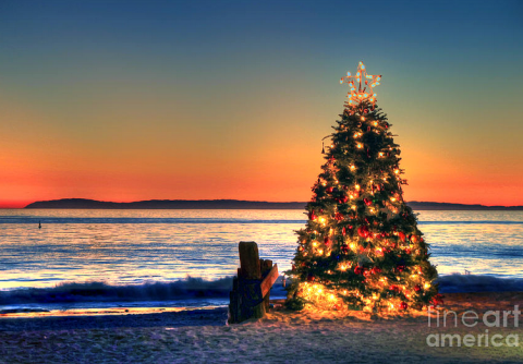 Christmas Tree On The Beach At Sunset Photograph