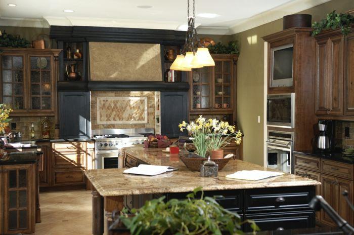 Wände Streichen Ideen Küche Beige Wandfarbe Kücheninsel Pflanzen