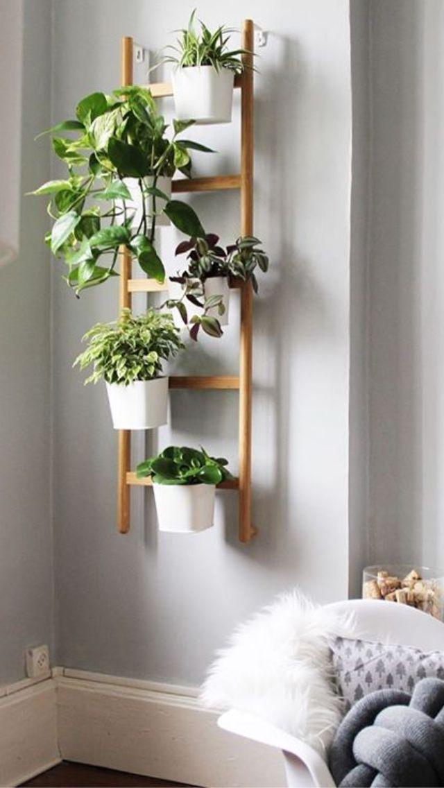 #gardenideas Scala a pioli per giardino verticale Holzleiter für grünes Dekor genießen Sie Ihre