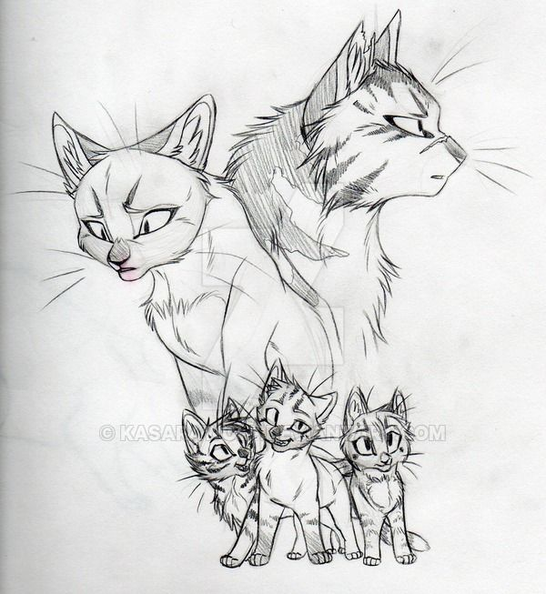Their His Kits Sketch By Kasarawolf On Deviantart Warrior Cat