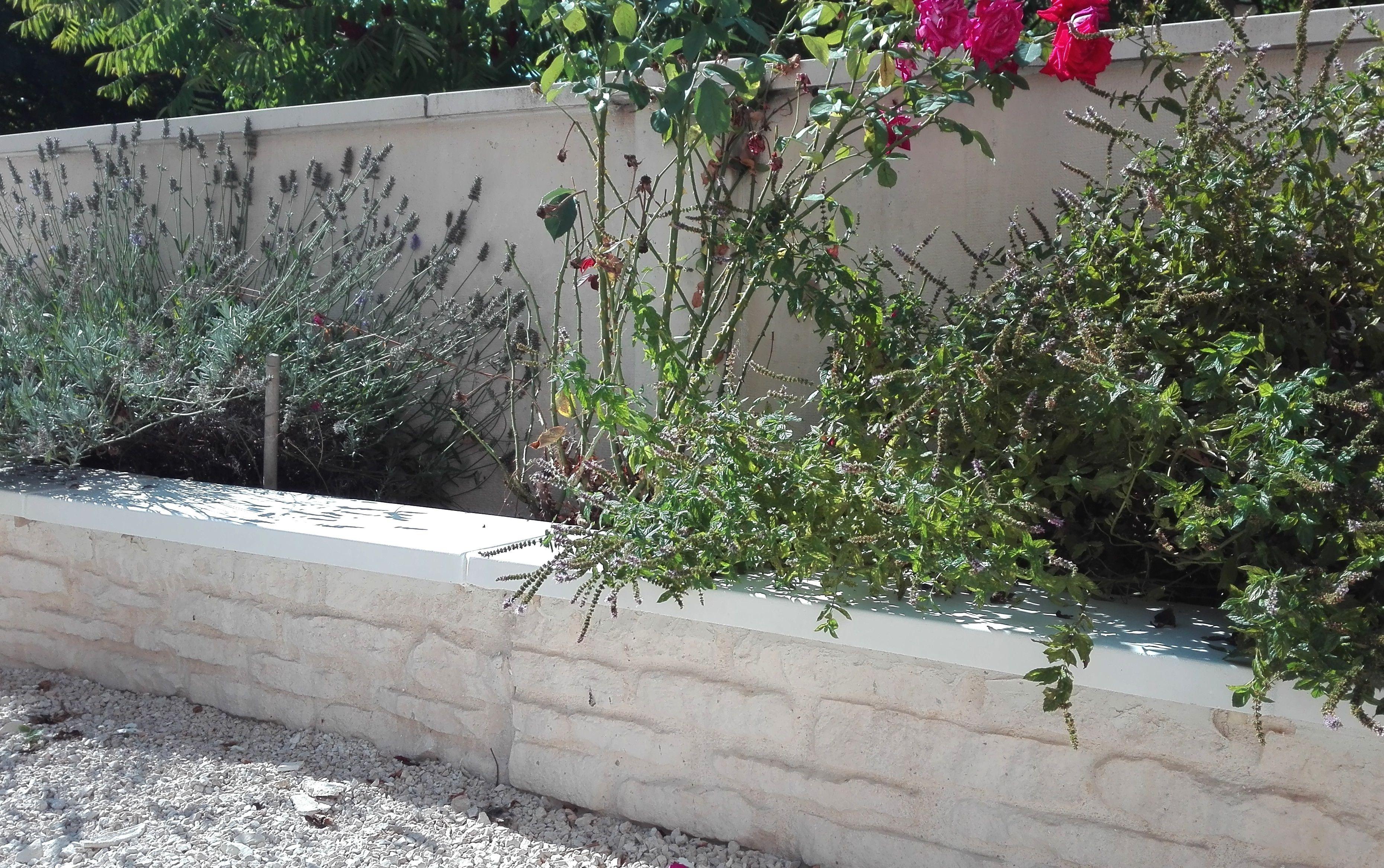 Muret De Jardin En Beton Prefabrique Imitation Pierres Muret De Jardin Jardin En Beton Jardins