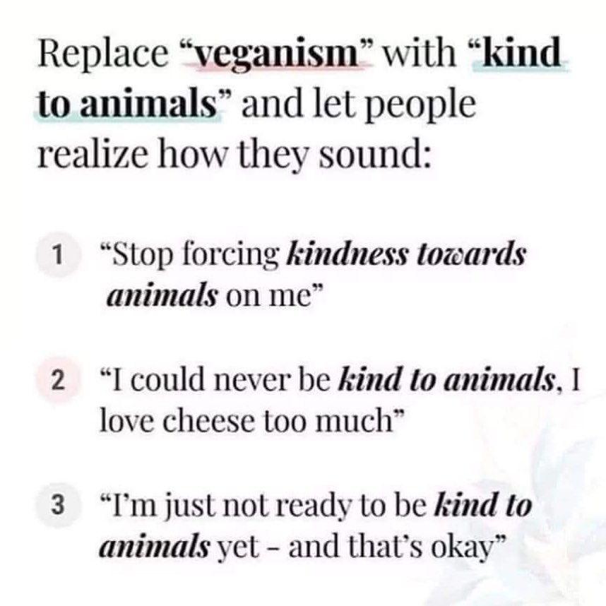 "Vegan Memes on Instagram: ""No difference ��️ #VeganMeme #VeganMemes #VeganOptions #NewVegan #GoVegan #VeganQuote #VeganJoke #VeganForEverything #FunnyVegan…"""