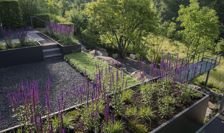 Pin Von Susan Adams Auf Garten Landschaftsdesign Abschussiger Garten Gartendesign Ideen