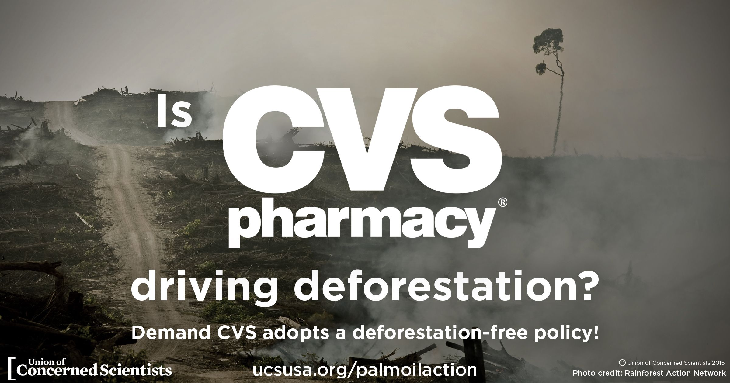 Palm Oil - CVS