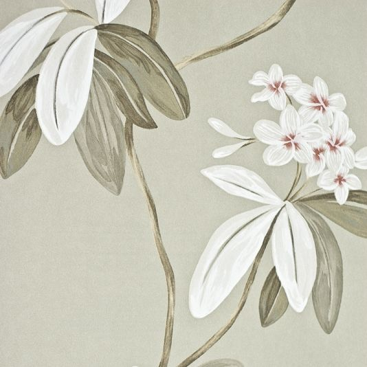 Oleander floral wallpaper contemporary large floral print wallpaper on grey background with pewter white and