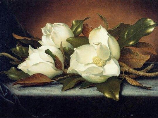 Martin Johnson Heade (1819-1904) -Magnolia grandiflora