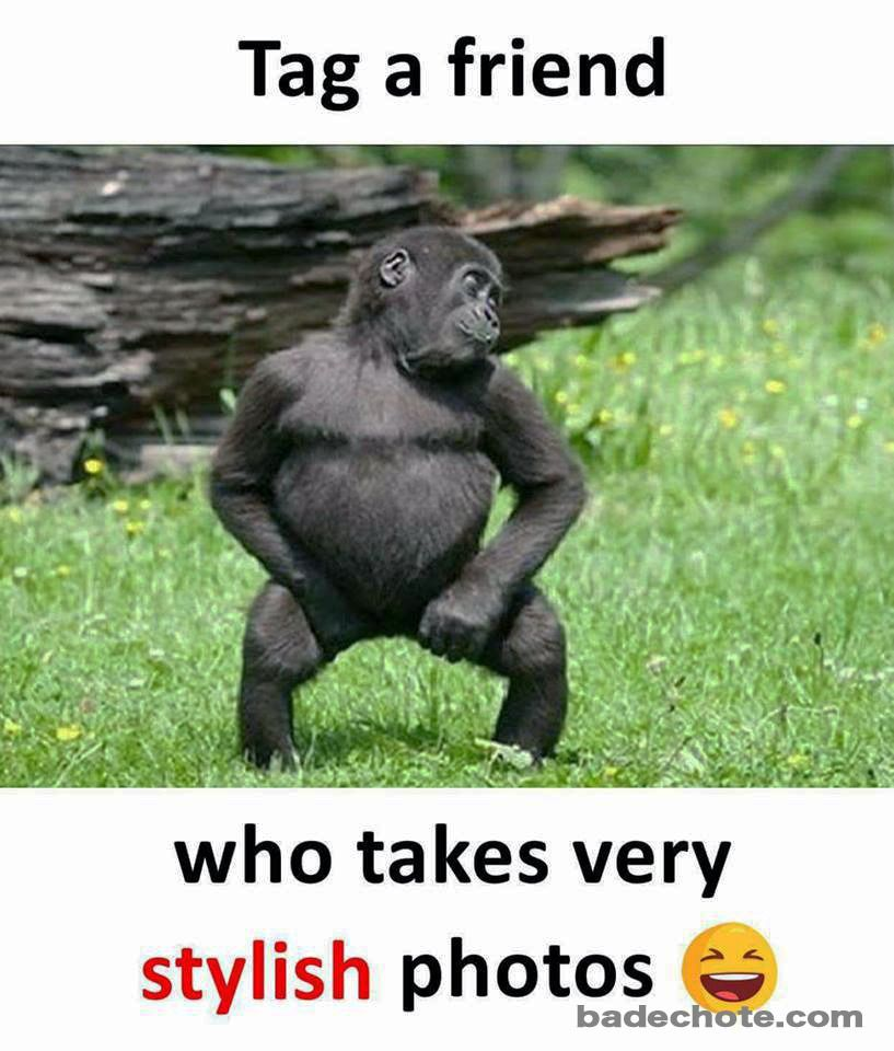 Tag Those Photo Addict Friends Posers Poser Photolover Stylishpose Badechote Badechoteofficial Lik Funny Friend Memes Cute Funny Quotes Bff Quotes Funny