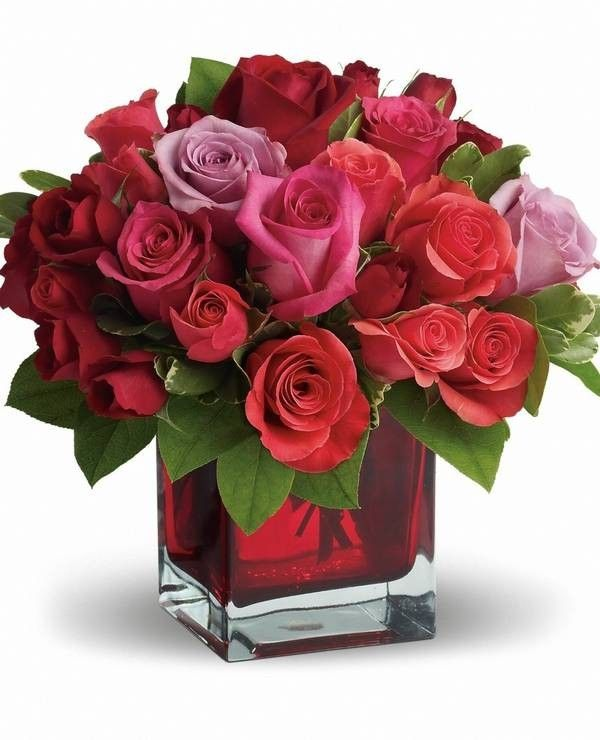 http://www.purevolume/kokonayua cheap valentines day flowers, Ideas