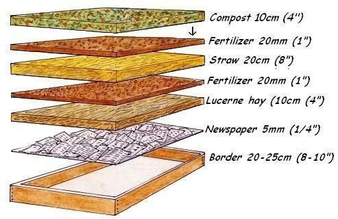 the layers of a raised garden bed