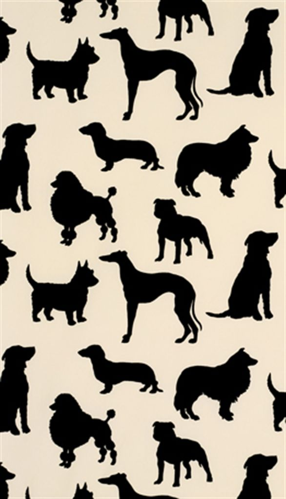 Osborne Little W5872 01 Dog Wallpaper Osborne And Little Wallpaper Dog Wallpaper Iphone