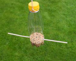 Futterstation für Vogelfutter aus einer Plastikflasche