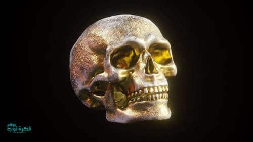صور جماجم مرعبة جدا 2019 خلفيات جماجم نارية كيوت ملونه Hd 8 Skull Model Skull Skull Art