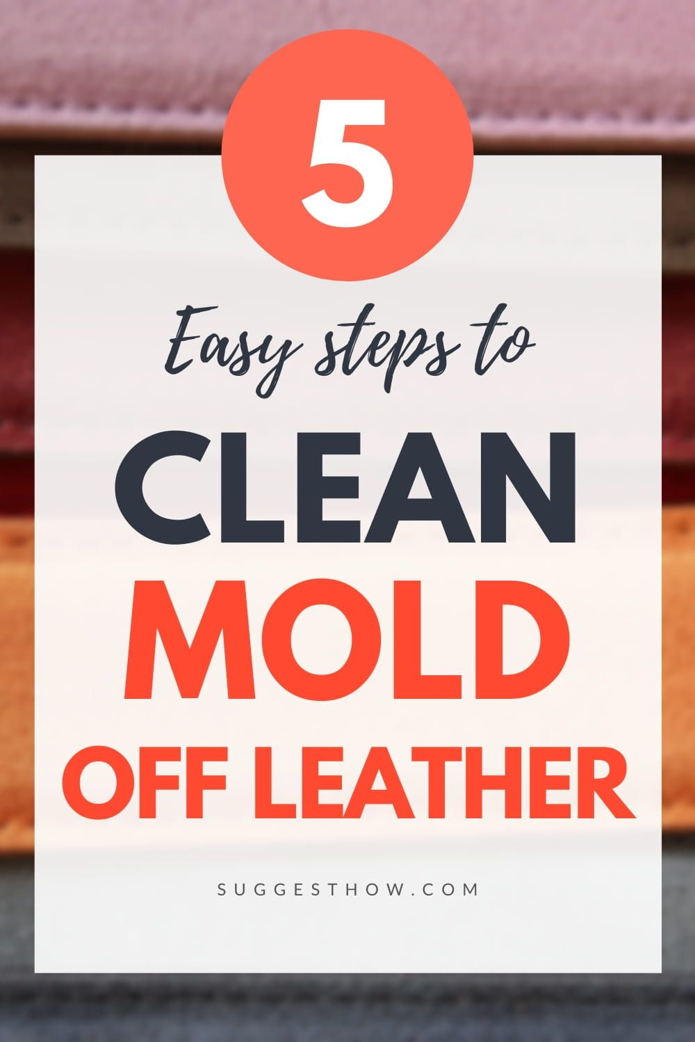How to clean mold off leather 5 steps to follow in 2020