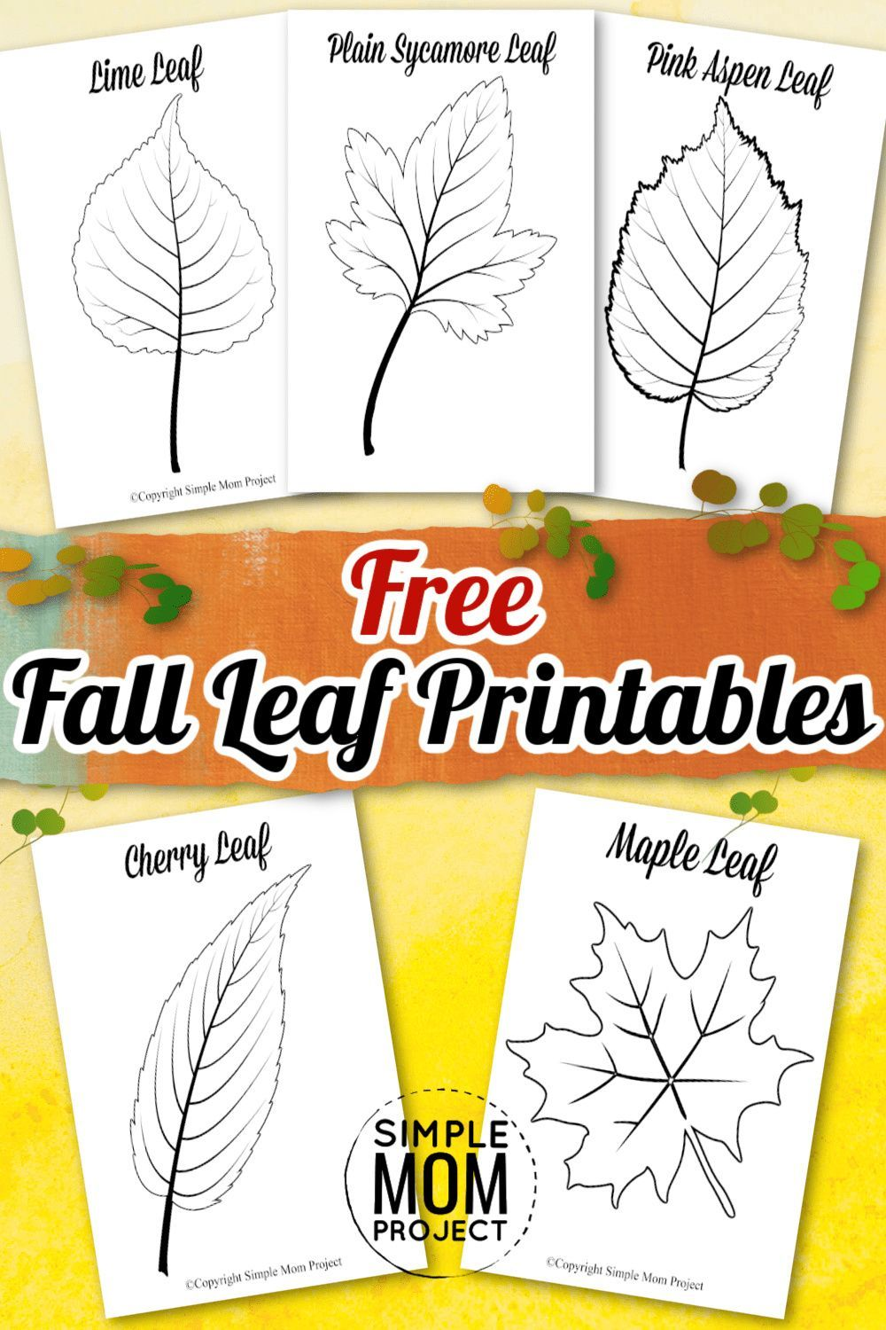 free printable large leaf templates stencils and patterns simple mom project in 2020 leaf template fall leaf template fall coloring sheets pinterest