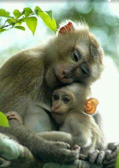 Moeder en kind.