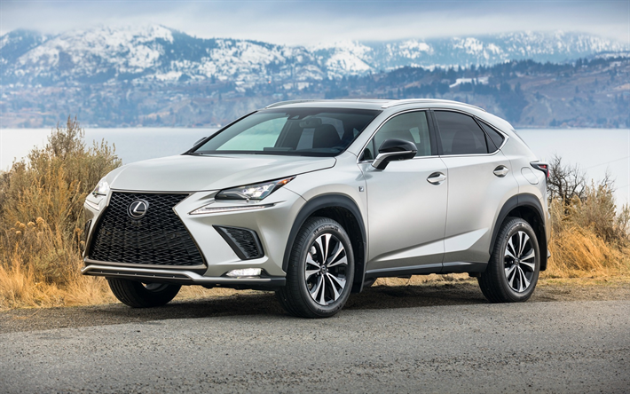 Download wallpapers Lexus NX, 300h F SPORT, 2018, exterior