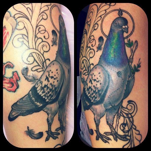 a pigeon and a boy pdf