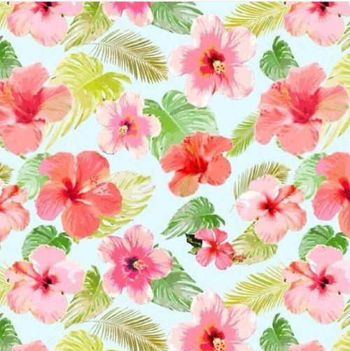 Flowers, Fondos, Wallpapers, Hawaianas, Fondo De Pantalla