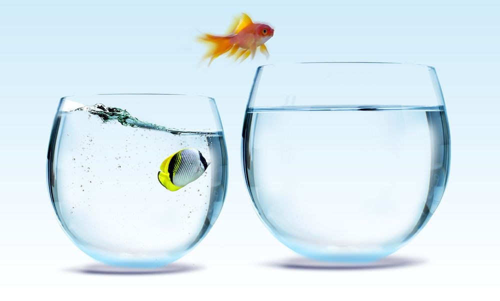 Five Key Steps to Habit Change