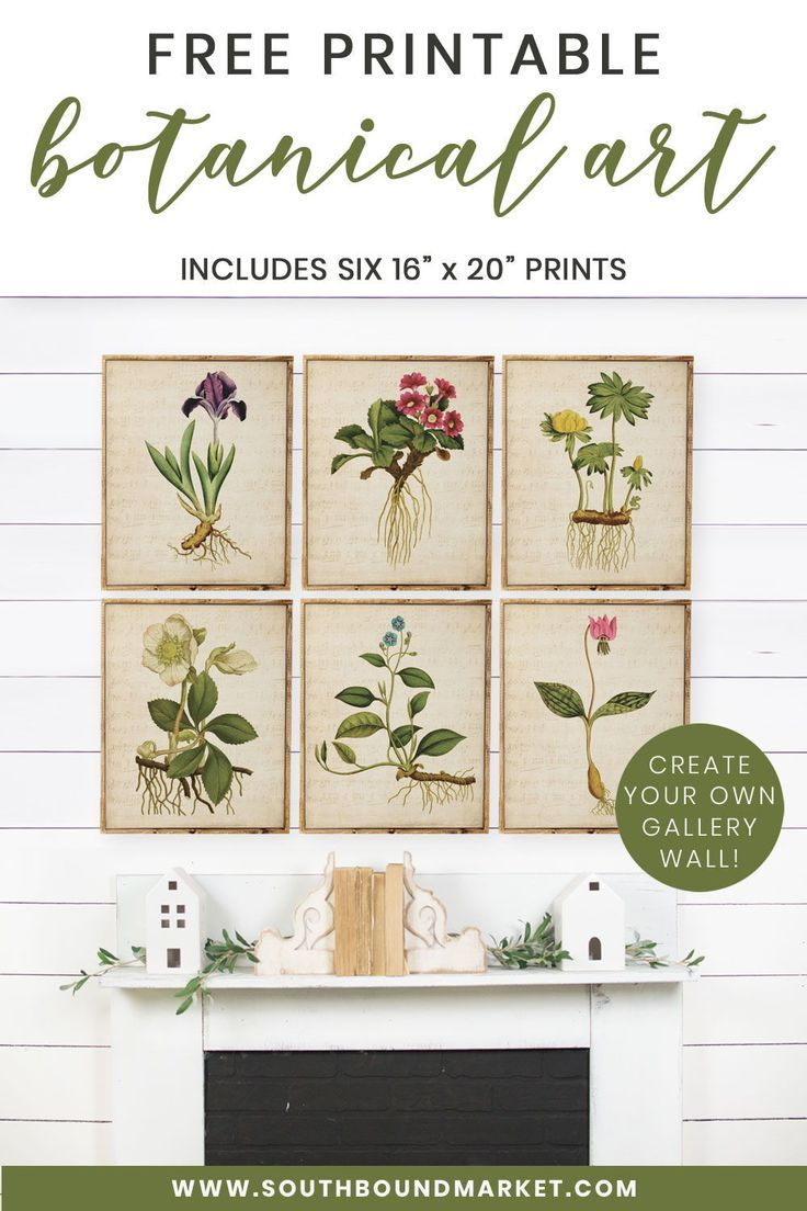 FREE PRINTABLES! Download six free botanical prints and
