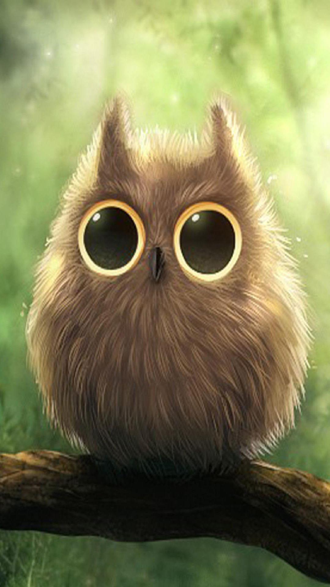 Cute Owl iPhone Wallpapers WallpaperSafari Oh My