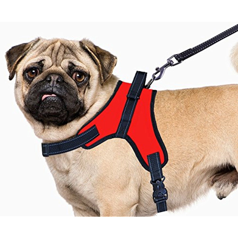 Source Iris No Pull Dog Harness Small Medium Large Extra Large
