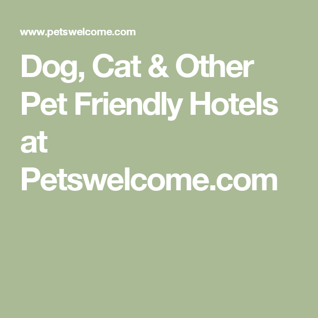 Dog Cat Other Pet Friendly Hotels At Petswelcome