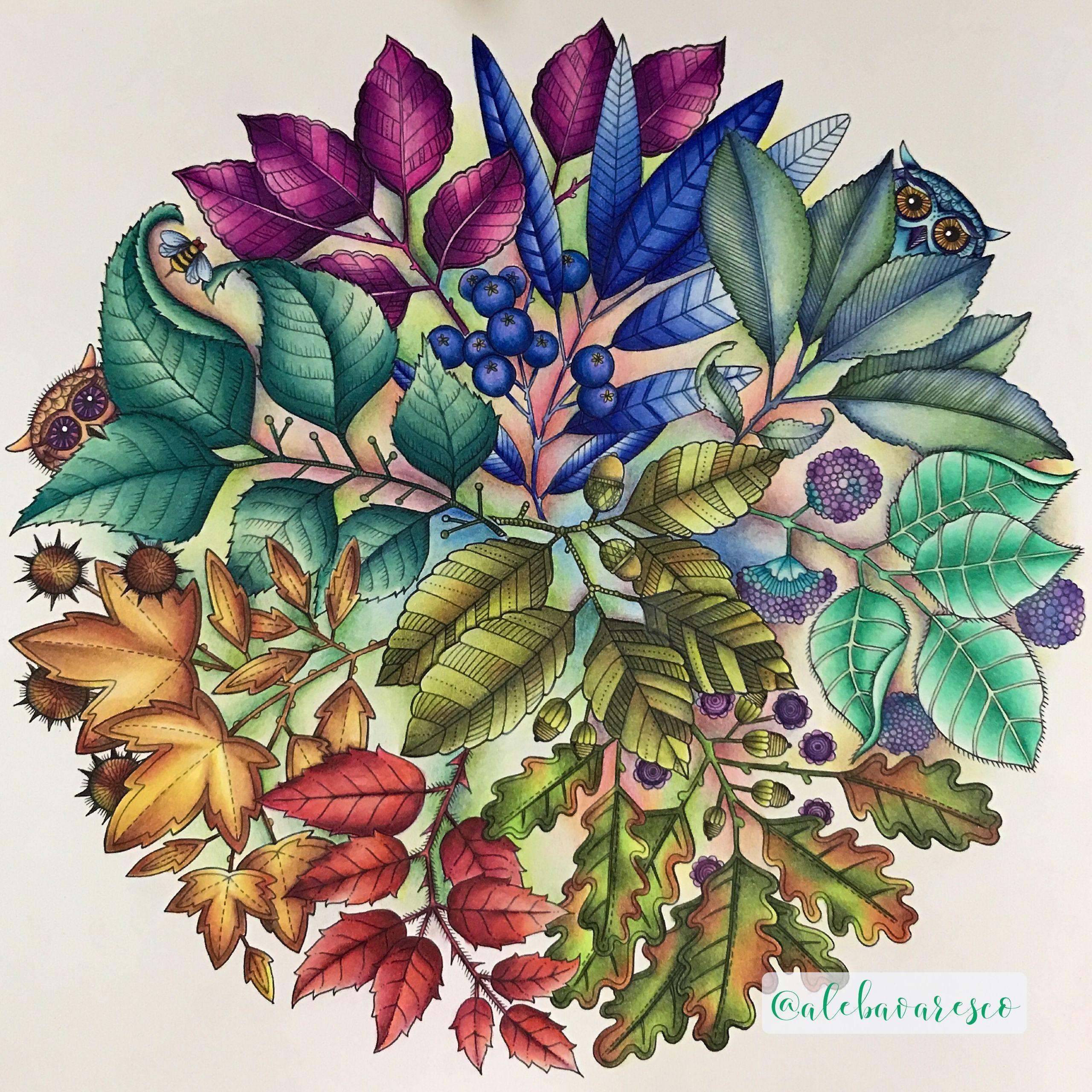 Secret Garden Johanna Basford 5 Ideas For The Visual Prot Secret Garden Coloring Book Secret Garden Coloring Book Finished Johanna Basford Secret Garden