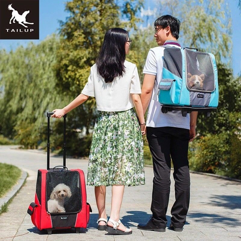 High Quality Pet Carrier Backpack Travel Bag For Cat And