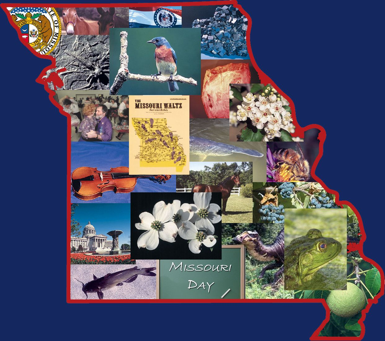 Missouri state symbols ohio 17 pinterest social studies missouri state symbols buycottarizona