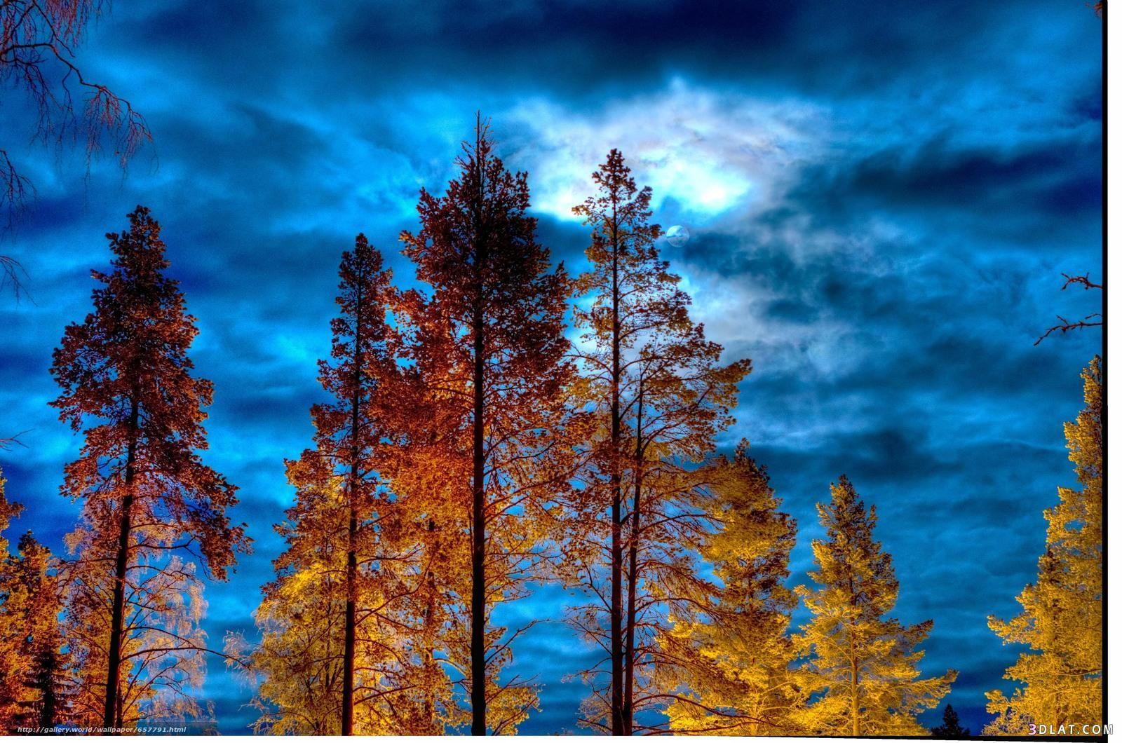 الطبيعة الخلابة 2018 أجمل خلفيات للطبيعة 3dlat Com 13 18 Ee7f Tree Wallpaper Wallpaper Tree