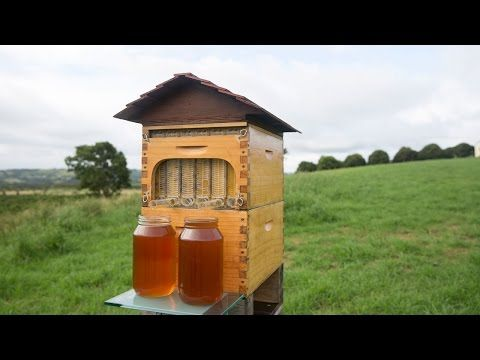 Honey on tap. Enough said | Ideas & Inspiration To Live, Work, Play on beehive plans and designs, box house designs, food designs, bird designs, luxury pool house designs, signs designs, cat house designs,