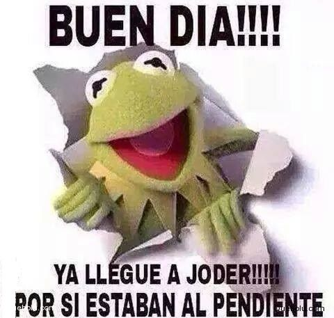 Buen Dia Meme Google Search Funny Images Native American Quotes Muppets