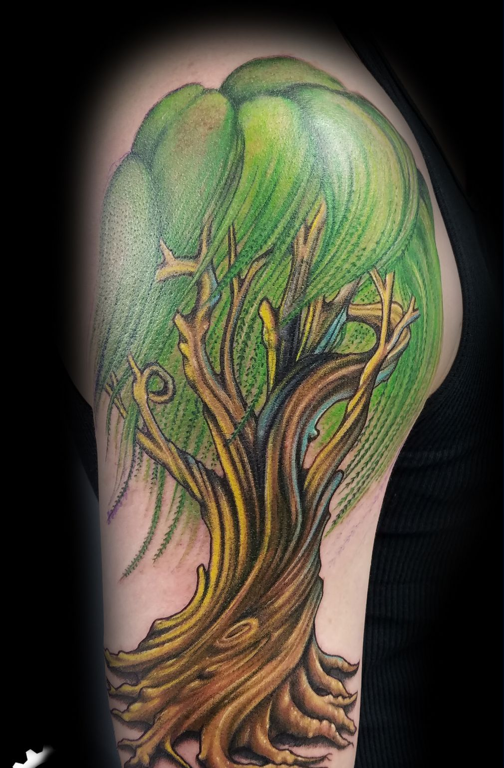 30 Willow Tree Tattoo To Boast Up Symbolism And Beauty   Owls On A ...