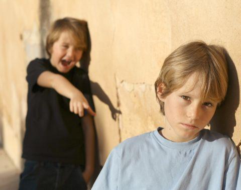 Verbal bullying in schools