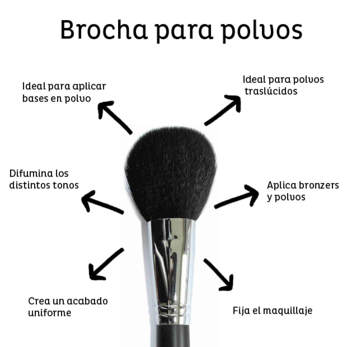 Guía básica de brochas para maquillaje – Maquillaje