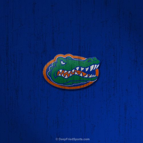 floridagators1c4.jpg (500×500) Florida gators