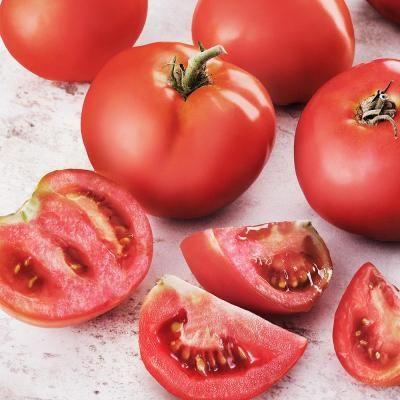 Bonnie Plants 19 3 Oz Tomato Better Bush 0207 Edible 400 x 300