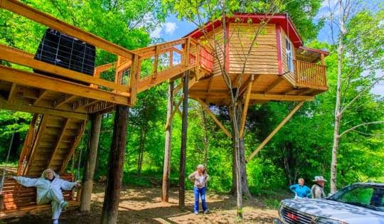 Camp In A Tree House In Lebanon Kentucky Camping In