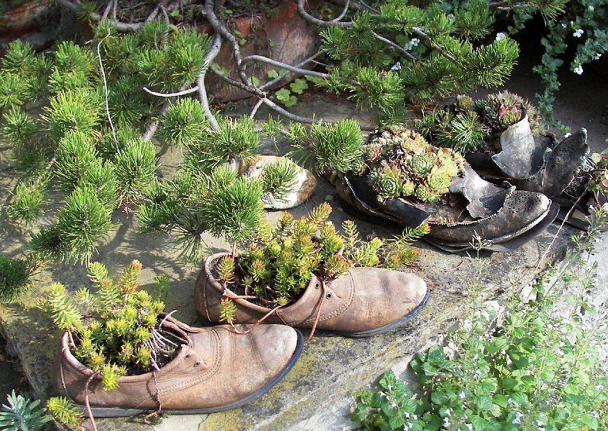 Gartengestaltung Bilder Bornim Staudengarten Förstergarten 55 - ausgefallene gartendeko kaufen