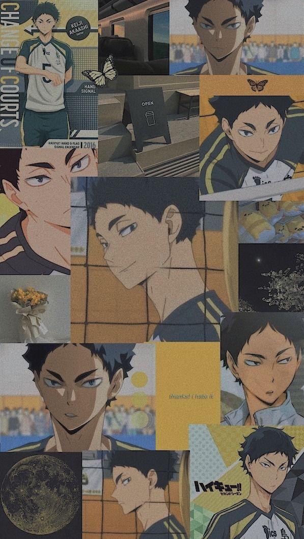 Akaashi Keiji | Wallpaper