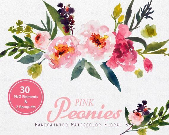 Digital Clipart Watercolor Flower Clipart Peonies Clip Art
