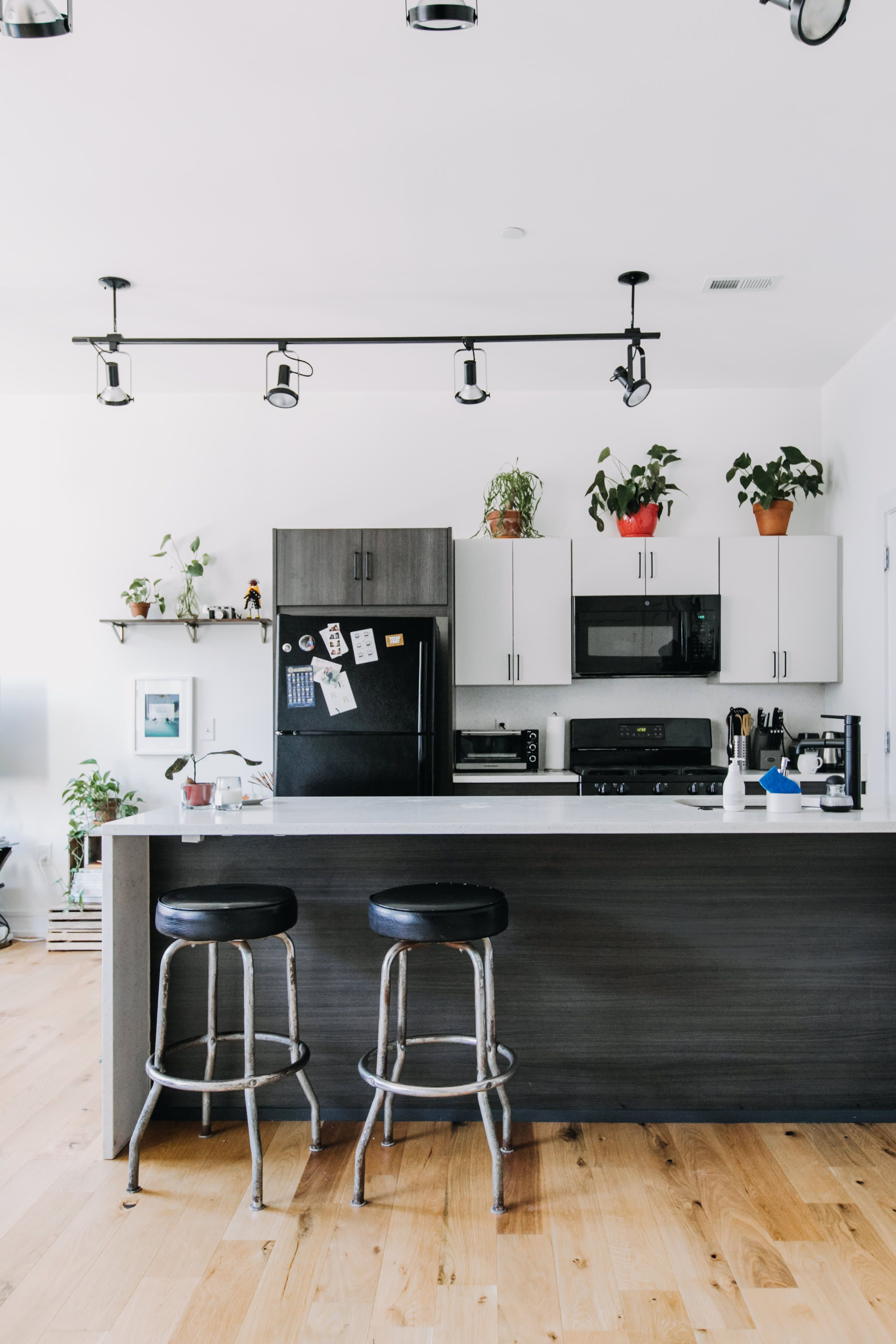 Plants and DIY Projects Make This Philly Rental Apartment
